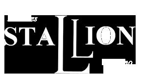 Stallion Palermo